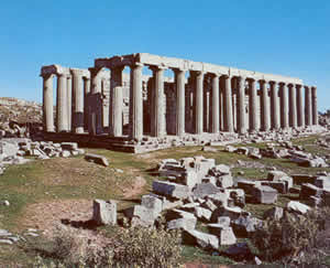 the temple of apollo